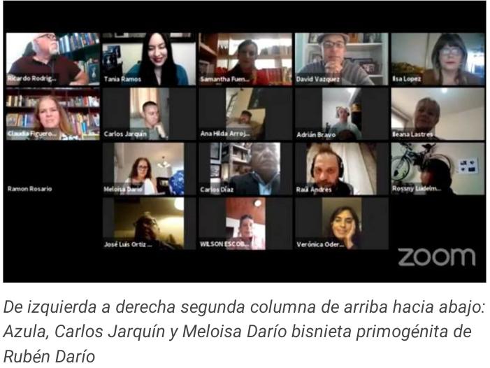 Participantes en la entrevista virtual