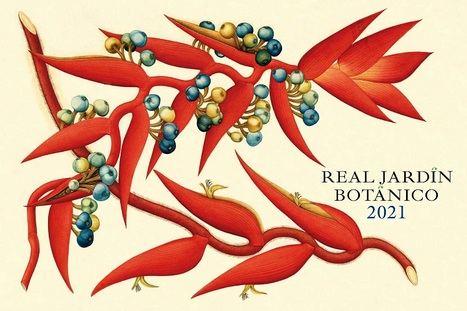 El Real Jardín Botánico presenta su calendario para el año que viene