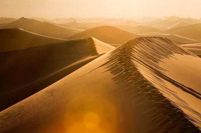 Fotograma de la película Dune