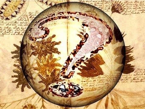 Página del Manuscrito Voynich