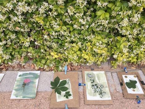 Día Internacional de la Fascinación por las Plantas y el Día Internacional de los Museos