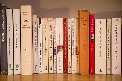 Los 5 libros de la literatura francesa que deberías leer