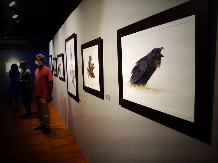Exposición 'Pájaros en la cabeza'