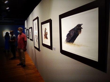 Iñaki Diez nos enseña a ver la vida animal con ojos de pintor