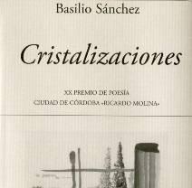 Basilio Sánchez gana el premio de Poesía Ciudad de Córdoba