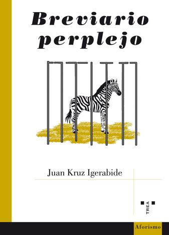 Juan Kruz Igerabide: